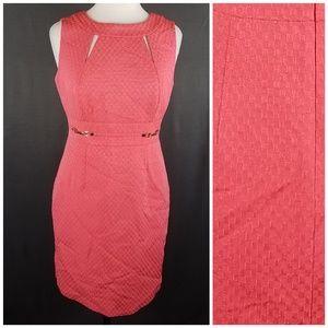 4/10- Tahari dress size 6P